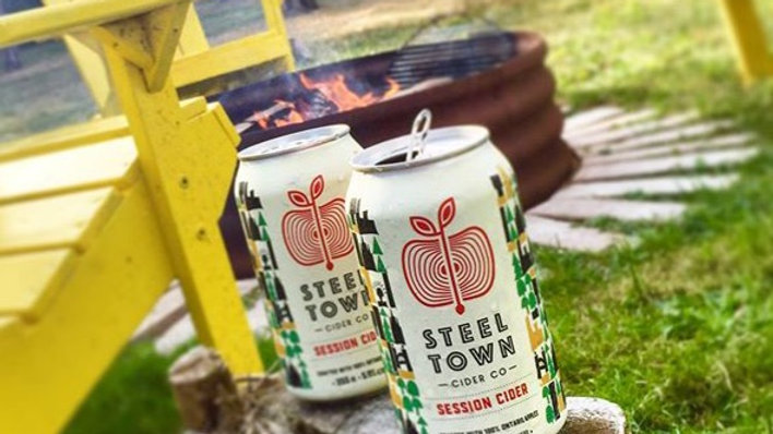 SESSION CIDER 355ml CANS