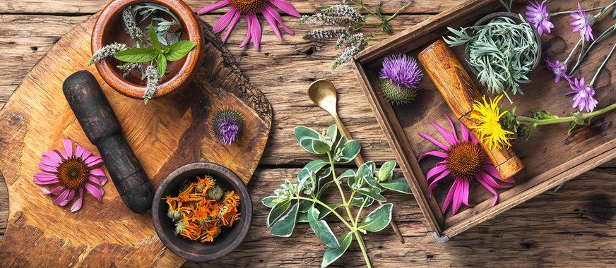 Herbs_72.jpg