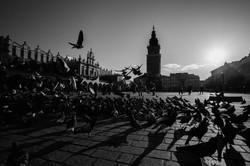 Poland_-_Mercier_Baptiste_©-17