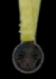 2017 bronz ödül askılı 2.png