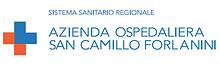 logo_sancamillo.png