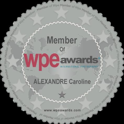 Certificat WPE