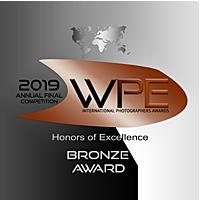 Award WPE Bronze
