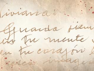 Carta 8 - Las líneas de la vida