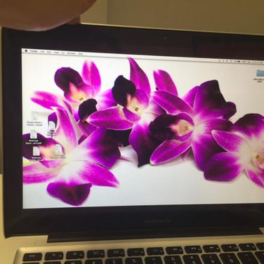 Faulty Laptop screen lines repair coomera