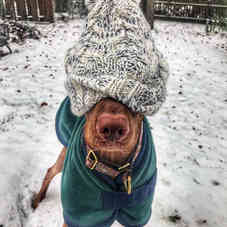 It's cold outside...