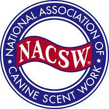 Nacsw logo,download.jpg