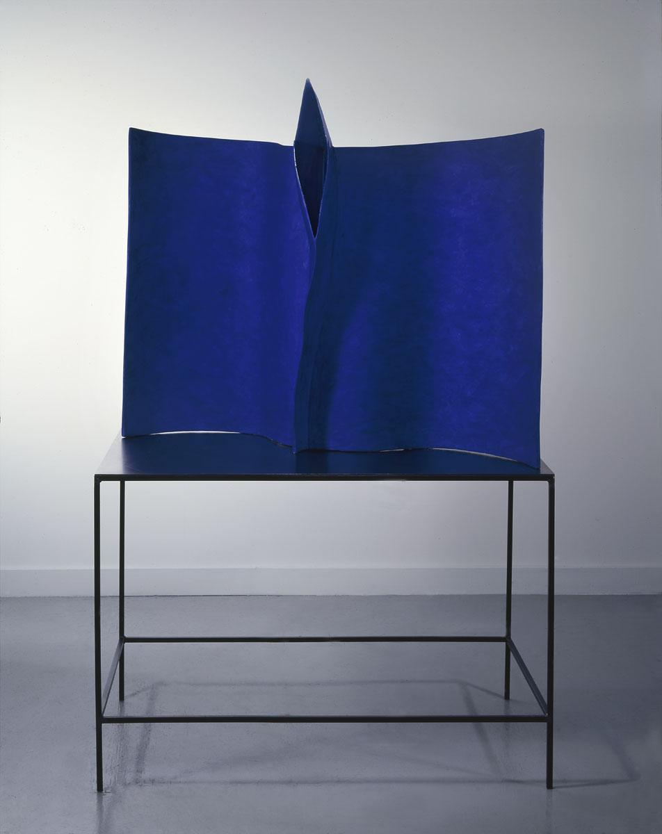 BLUE BIRD 1996 12 x 16,5 x 6in