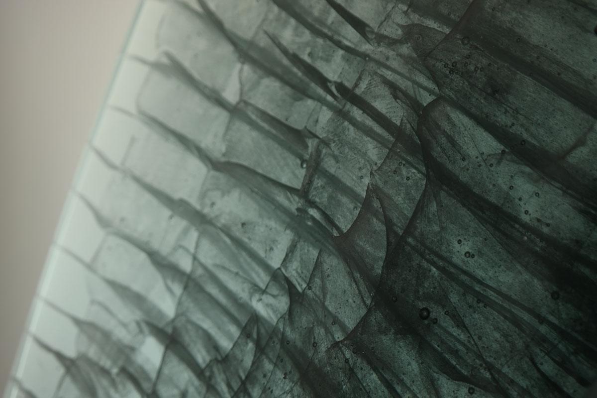 BLACK SWAN DETAIL