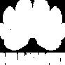 huawei logo white.png