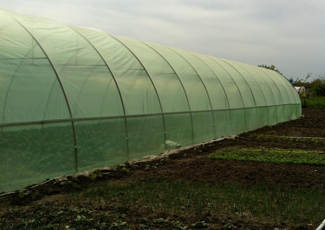 Greenhouses Romania