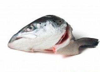 Salmon Heads (2)