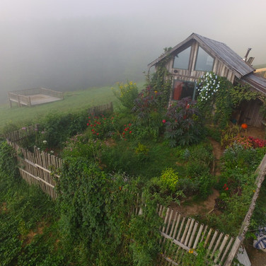 garden-2016_1_orig.jpg