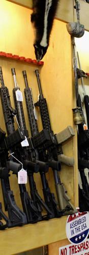 Beaverton guns