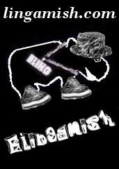 Blingamish