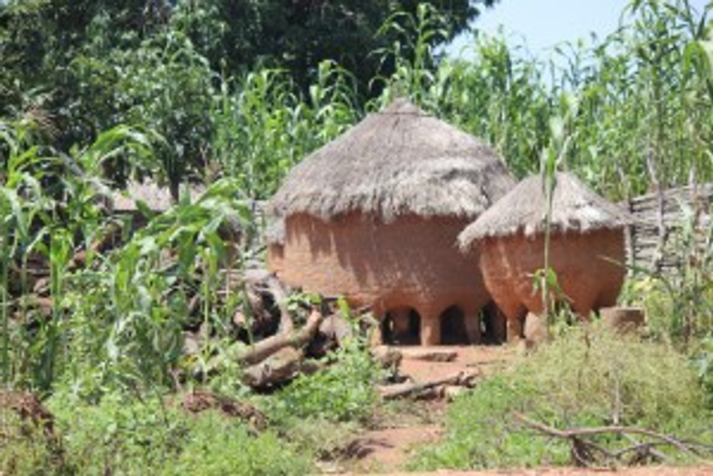 Grain store in Dukawa land
