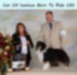 Open Dogs - Wrangler4thTXT.jpg