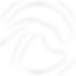 Timeline_logo blanc.png
