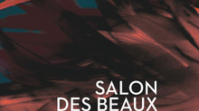 Salon des Beaux Arts, Carrousel du Louvre, Paris (France)