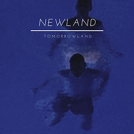 Newland-2.jpg