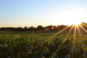 A Shared Agenda for Growing West Virginia's Agricultural Economy
