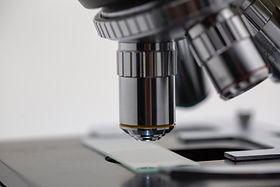 Life Sciences Benchmarking and Opportunity Analysis