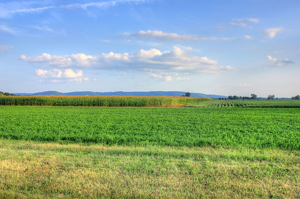 Northern Pennsylvania farmland with cornfields and mountains in the background