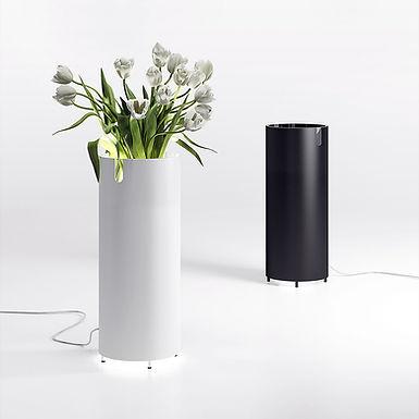 Aquarius vase lamp