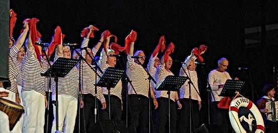 Les Fous de Bassan-2015-Arena8.jpg