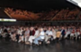 Les Fous de Bassan-2015-Arena4.jpg