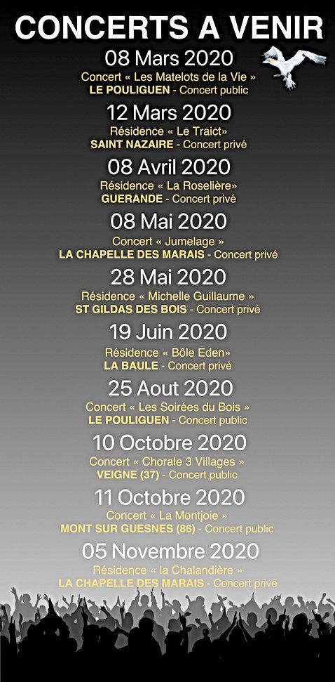 Les Fous de Bassan-Concert_à_venir.jpeg