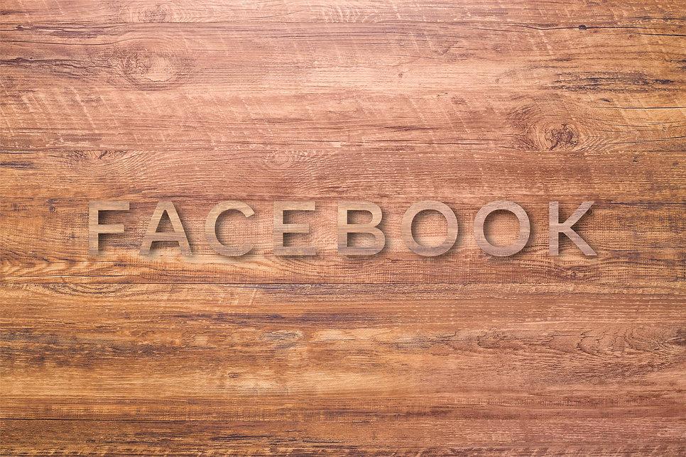 Facebook-Wordmark-Plywood Sign.jpg