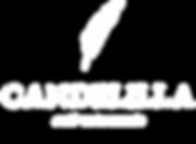 logo oficial web.png