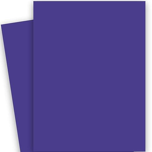 Curious Collection Paper - Lavender