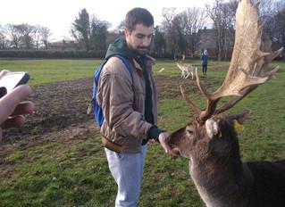 Raúl, un guía turístico perdido en IRLANDA!!