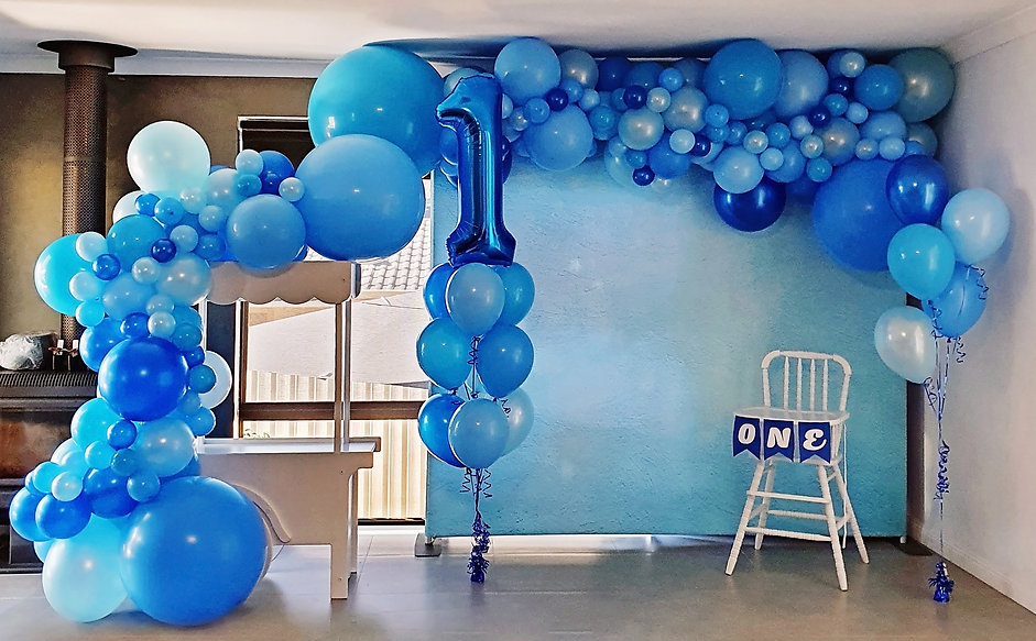 1st Birthday Package blue.jpg