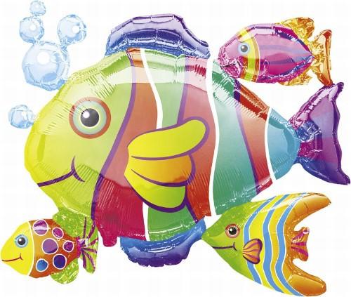 Tropical Fish 77x61cm