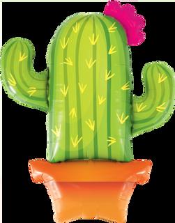 Cactus 99cm