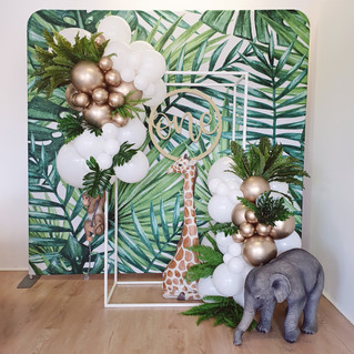 Wild One Party Backdrop Perth Balloon Party Hire