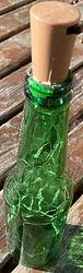 Bottle 2.jpeg