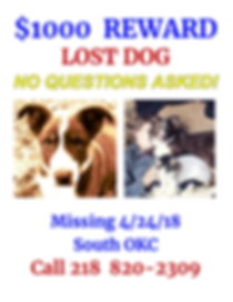 Brisby REWARD FLYER  LOST DOG BRISBY FIN