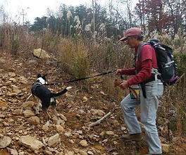 Keith Payne (KP) and Smokey Search Dog Mountains of NC