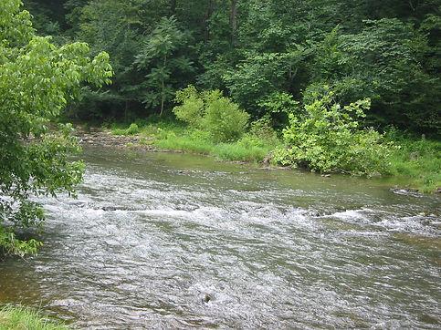 River Ridge Site.jpg