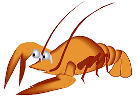 Crayfish 1.PNG