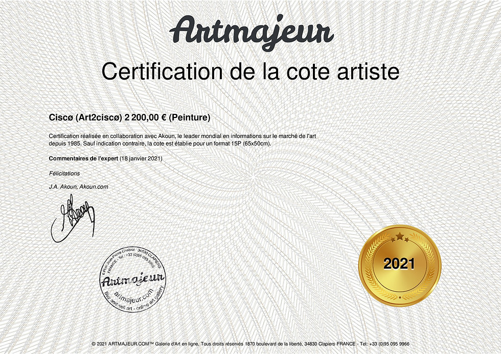certification_art2cisco_6227.jpg