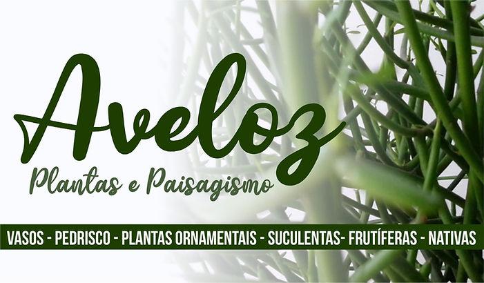 Banner Aveloz