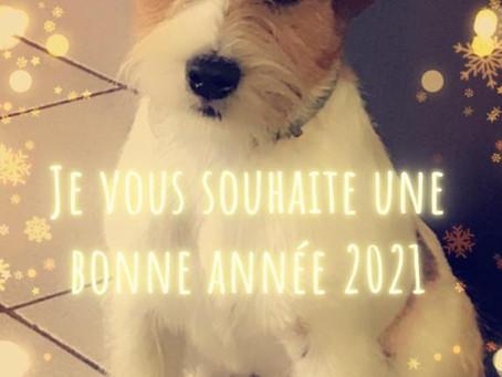 Nos meilleures vœux pour 2021!
