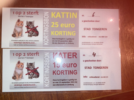 Bent u uw kattenbon al gaan halen op de milieudienst van Tongeren? Kortingsbon op sterilisatie.
