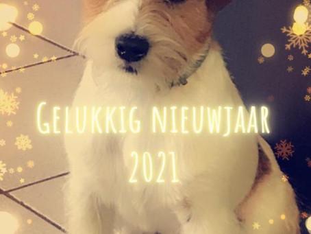 Gelukkig nieuwjaar ! Onze beste wensen voor 2021!