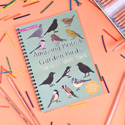 Button and Squirt - Fact and Activity Book (British Birds)